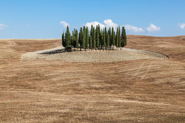 Toskana - Landschaften - An der Straße von Buonconvento nach Pienza