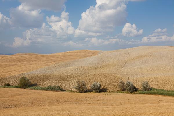 Toskana - Landschaften - Val di Merse