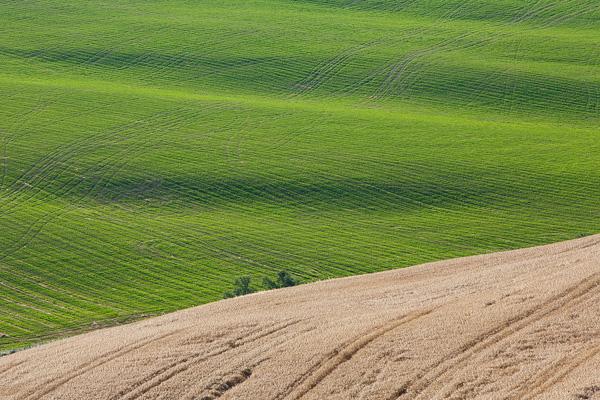 Toskana - Landschaften - Wellengang