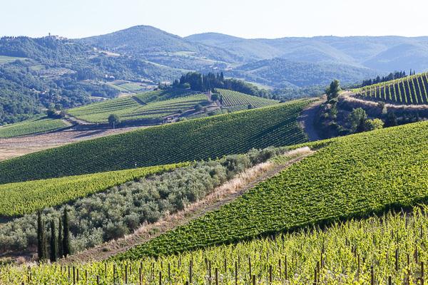 Toskana - Landschaften - Chianti