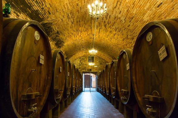 Toskana - Vignamaggio - Weinkeller